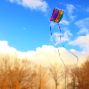 Flying a Kite + Blueberry Muffins